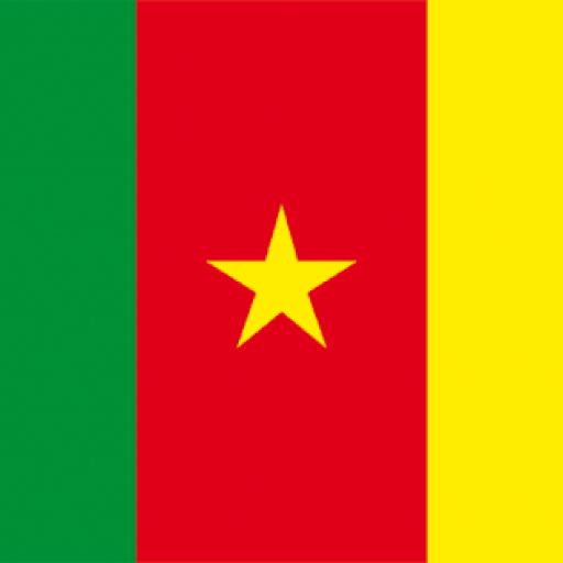 Cameroun ACTU Online